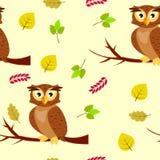 Teste padrão sem emenda com as corujas em um ramo de árvore e nas folhas de outono Fotografia de Stock