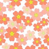 Teste padrão sem emenda com as flores azuis de sakura Imagem de Stock
