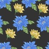 Teste padrão sem emenda com as flores azuis e amarelas em um fundo escuro ilustração do vetor