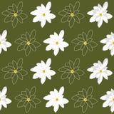 Teste padrão sem emenda com as flores brancas brilhantes da magnólia em um fundo verde pantanoso Imagens de Stock Royalty Free