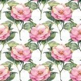 Teste padrão sem emenda com as flores cor-de-rosa da aquarela Imagens de Stock