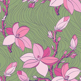 Teste padrão sem emenda com as flores da magnólia do desenho Fotos de Stock Royalty Free