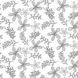 Teste padrão sem emenda com as flores desenhadas mão Fotografia de Stock