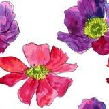 Teste padrão sem emenda com as flores do desenho da aquarela Imagem de Stock Royalty Free