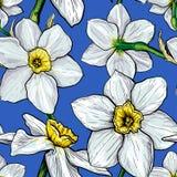 Teste padrão sem emenda com as flores dos narciso Imagem de Stock