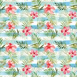 Teste padrão sem emenda com as flores e as folhas tropicais da aquarela sobre Fotos de Stock Royalty Free