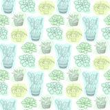 Teste padrão sem emenda com as flores suculentos em uns potenciômetros Fundo floral do vetor para o projeto de matéria têxtil Imagens de Stock Royalty Free