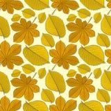 Teste padrão sem emenda com as folhas de outono da castanha e do olmo ilustração do vetor