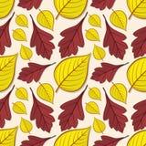Teste padrão sem emenda com as folhas do espinho e do Linden ilustração do vetor