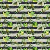Teste padrão sem emenda com as folhas tropicais da aquarela na parte traseira listrada Imagens de Stock Royalty Free