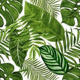 Teste padrão sem emenda com as folhas tropicais para a tela, o papel de parede, o papel de envolvimento, etc. Aquarela tropical d ilustração royalty free