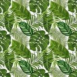 Teste padrão sem emenda com as folhas tropicais para a tela, o papel de parede, o papel de envolvimento, etc. Aquarela tropical d ilustração stock