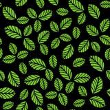 Teste padrão sem emenda com as folhas verdes da morango Fotos de Stock Royalty Free