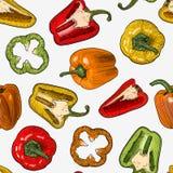 Teste padrão sem emenda com as pimentas tiradas mão do estilo do esboço isoladas no fundo branco Imagens de Stock Royalty Free