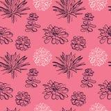 Teste padrão sem emenda com as plantas carnudas no fundo cor-de-rosa ilustração royalty free