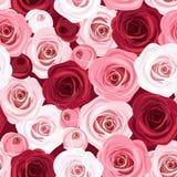 Teste padrão sem emenda com as rosas vermelhas e cor-de-rosa. Fotografia de Stock Royalty Free