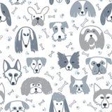 Teste padrão sem emenda com cães Imagem de Stock Royalty Free