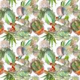 Teste padrão sem emenda com cacto, plantas carnudas e elementos florais Ilustração botânica da aquarela do vintage para a matéria Fotos de Stock Royalty Free