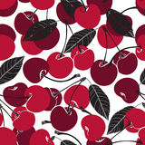 Teste padrão sem emenda com cereja em um fundo branco Fotografia de Stock Royalty Free