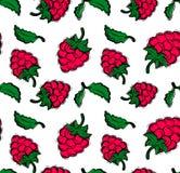 Teste padrão sem emenda com a cereja no fundo branco Imagens de Stock