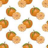 Teste padrão sem emenda com clementina ilustração stock