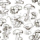 Teste padrão sem emenda com cogumelos Ilustração do vetor para sua água fresca de design Imagens de Stock Royalty Free
