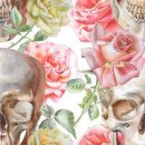 Teste padrão sem emenda com crânio e rosas da aquarela Fotografia de Stock