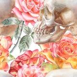 Teste padrão sem emenda com crânio e rosas da aquarela Imagem de Stock