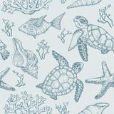 Teste padrão sem emenda com esboço de shell, de peixes, de corais e de tartaruga do mar Vetor desenhado mão Foto de Stock Royalty Free