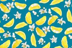 Teste padrão sem emenda com fatias do citrino do limão e flores com azul ilustração stock