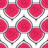Teste padrão sem emenda com figos das metades Sobremesa saudável Fundo de repetição frutado Frutas desenhadas mão Alimento exótic ilustração royalty free