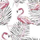Teste padrão sem emenda com flamingo e as folhas tropicais Elemento para o projeto dos convites, dos cartazes cinematográficos, d ilustração royalty free