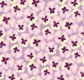 Teste padrão sem emenda com flores Fotos de Stock Royalty Free