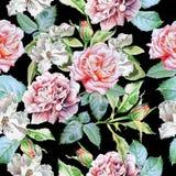 Teste padrão sem emenda com flores Imagens de Stock Royalty Free