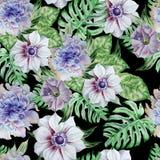 Teste padrão sem emenda com flores anemone petunia Peônia Ilustração da aguarela Imagens de Stock Royalty Free