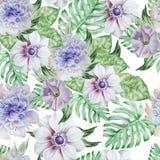 Teste padrão sem emenda com flores anemone petunia Peônia Ilustração da aguarela Foto de Stock Royalty Free