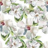 Teste padrão sem emenda com flores brancas Fotos de Stock