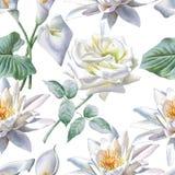 Teste padrão sem emenda com flores brancas Rosa calla Lírio Fotos de Stock