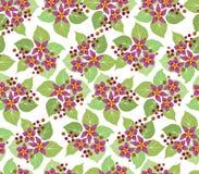 Teste padrão sem emenda com flores cor-de-rosa Imagem de Stock Royalty Free