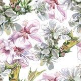 Teste padrão sem emenda com flores da aquarela Fotos de Stock Royalty Free