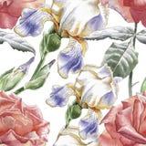 Teste padrão sem emenda com flores da aquarela Foto de Stock Royalty Free