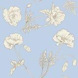 Teste padrão sem emenda com flores da papoila Fotografia de Stock Royalty Free