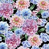 Teste padrão sem emenda com flores dahlia anemone Peônia Ilustração da aguarela Fotos de Stock Royalty Free