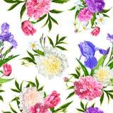 Teste padrão sem emenda com flores das peônias Foto de Stock