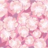 Teste padrão sem emenda com flores delicadas Fotos de Stock Royalty Free
