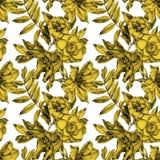 Teste padrão sem emenda com flores diferentes e as plantas tiradas à mão Foto de Stock