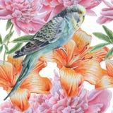 Teste padrão sem emenda com flores e papagaio Foto de Stock