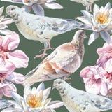Teste padrão sem emenda com flores e pombas Fotos de Stock