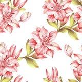 Teste padrão sem emenda com flores Ilustração da aquarela da tração da mão Foto de Stock Royalty Free