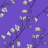 Teste padrão sem emenda com flores Mão desenhada ilustração stock